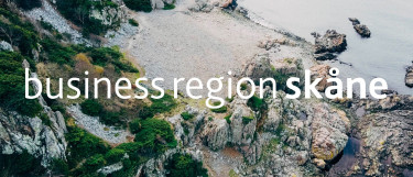 Business Region Case Study